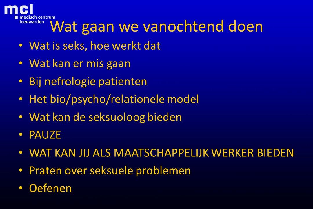 Wat gaan we vanochtend doen Wat is seks, hoe werkt dat Wat kan er mis gaan Bij nefrologie patienten Het bio/psycho/relationele model Wat kan de seksuo