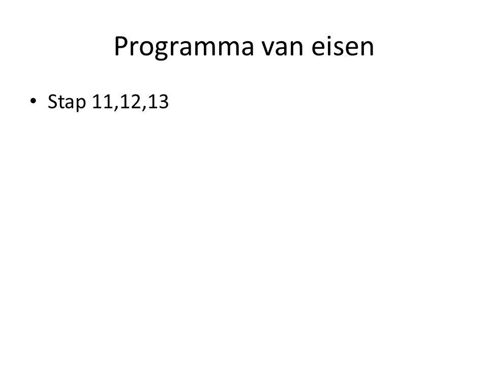 Programma van eisen Stap 11,12,13