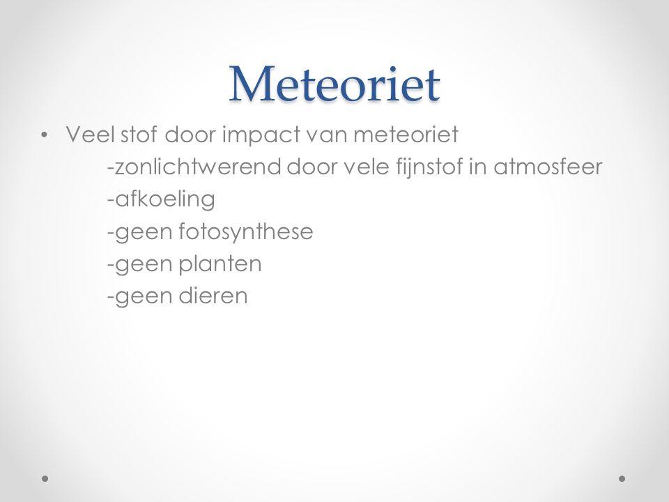 Meteoriet Veel stof door impact van meteoriet -zonlichtwerend door vele fijnstof in atmosfeer -afkoeling -geen fotosynthese -geen planten -geen dieren