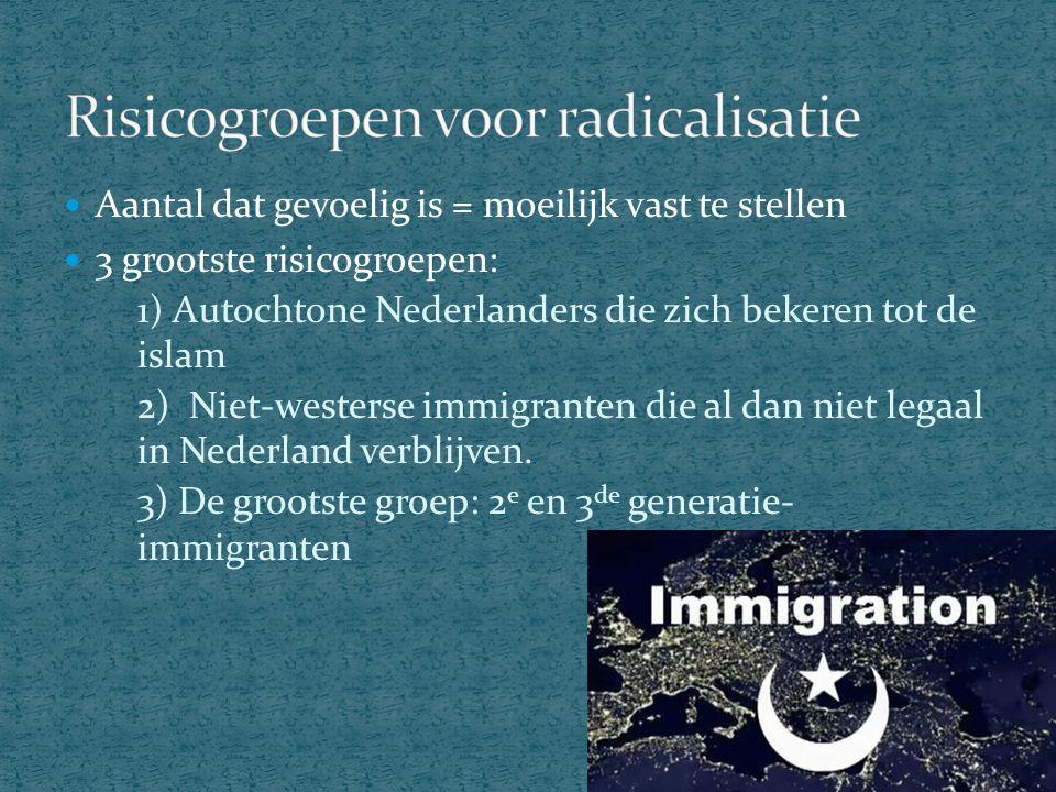 50% van de Nederlandse bevolking is niet-westers Etnische bevolkingsgroepen Niet- aantrekkelijke buurten Grootste aantal moslims in: Feijenoord, charlois en delfshaven Moskeeën en islamitisch onderwijs aanwezig Spanning tussen beide groepen