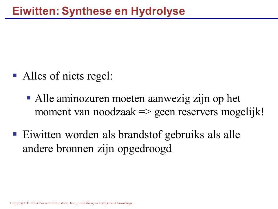 Copyright © 2004 Pearson Education, Inc., publishing as Benjamin Cummings Eiwitten: Synthese en Hydrolyse  Alles of niets regel:  Alle aminozuren mo