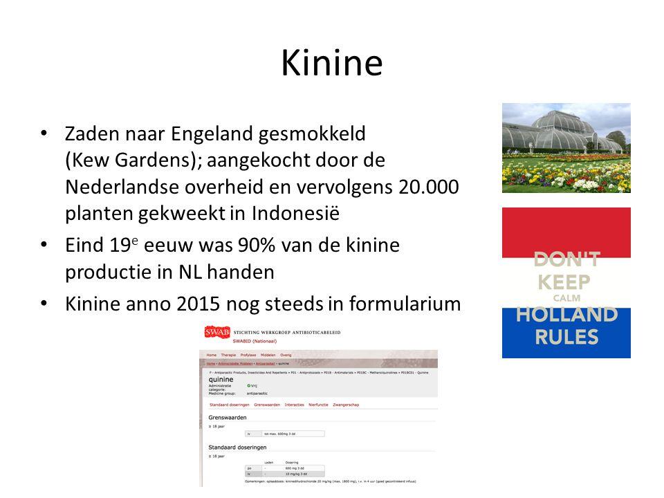 Kinine Zaden naar Engeland gesmokkeld (Kew Gardens); aangekocht door de Nederlandse overheid en vervolgens 20.000 planten gekweekt in Indonesië Eind 1