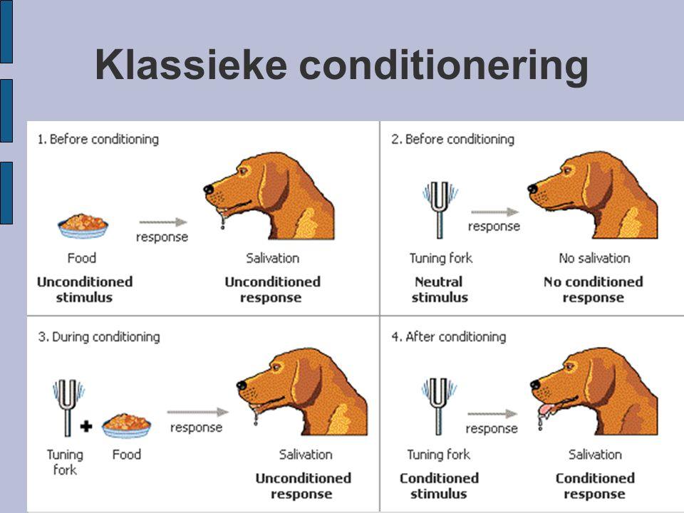 Klassieke conditionering