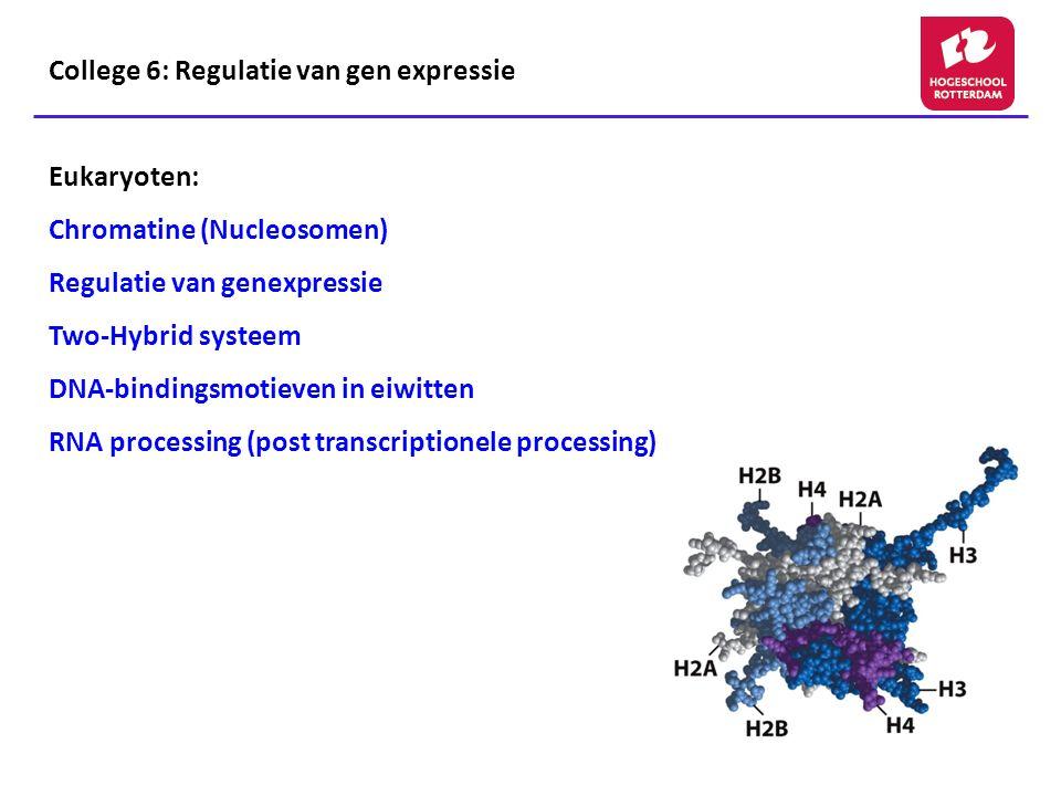Regulatie eiwitten: DNA bindingsdomeinen (vervolg) Helix-turn-helix Homeodomein
