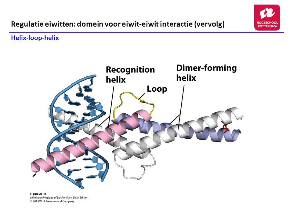 Regulatie eiwitten: domein voor eiwit-eiwit interactie (vervolg) Helix-loop-helix