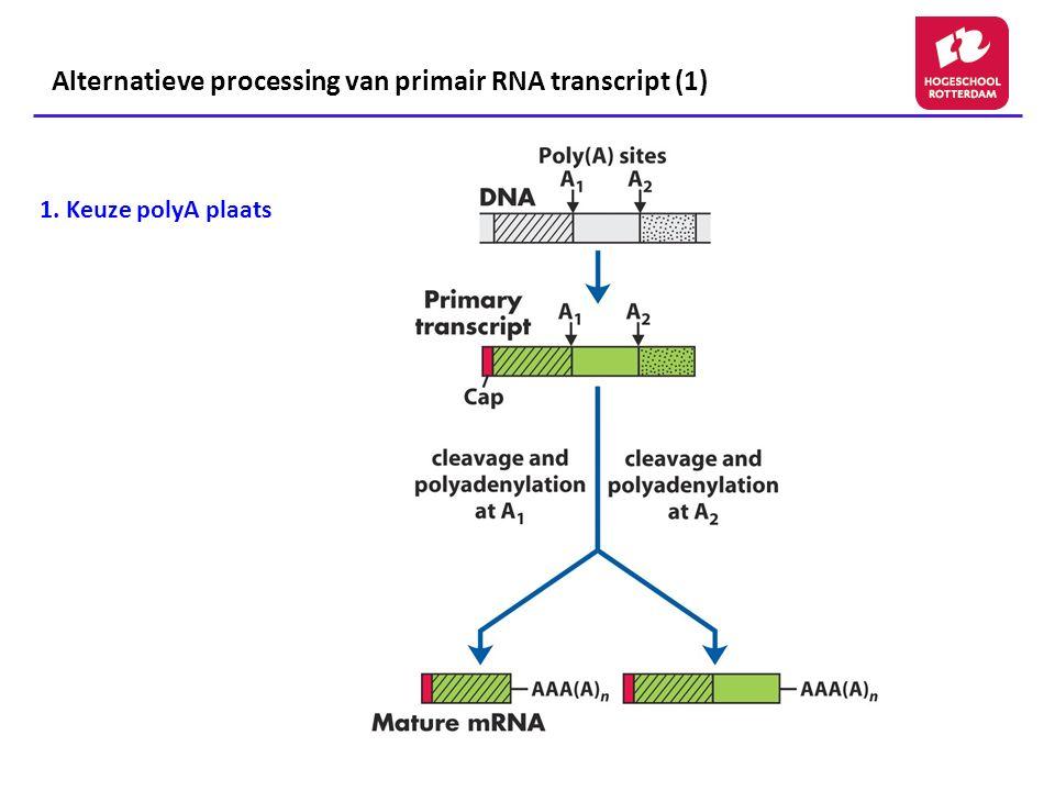 1. Keuze polyA plaats Alternatieve processing van primair RNA transcript (1)