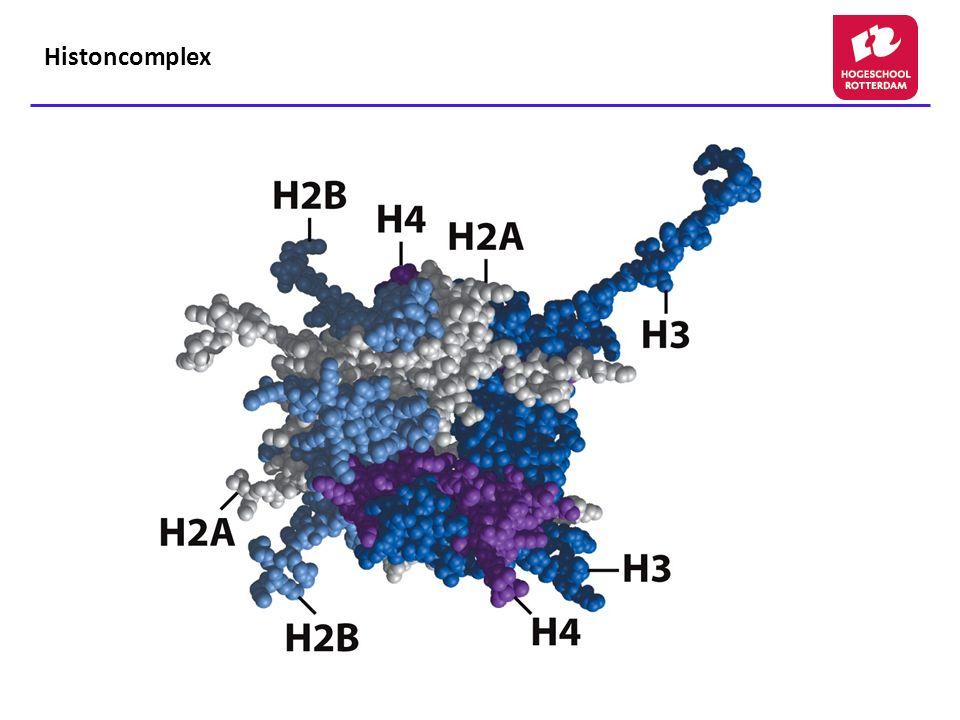 Post translationele modificatie Histon N- en/of C- terminale staarten : Histoncode (Lys en Arg)