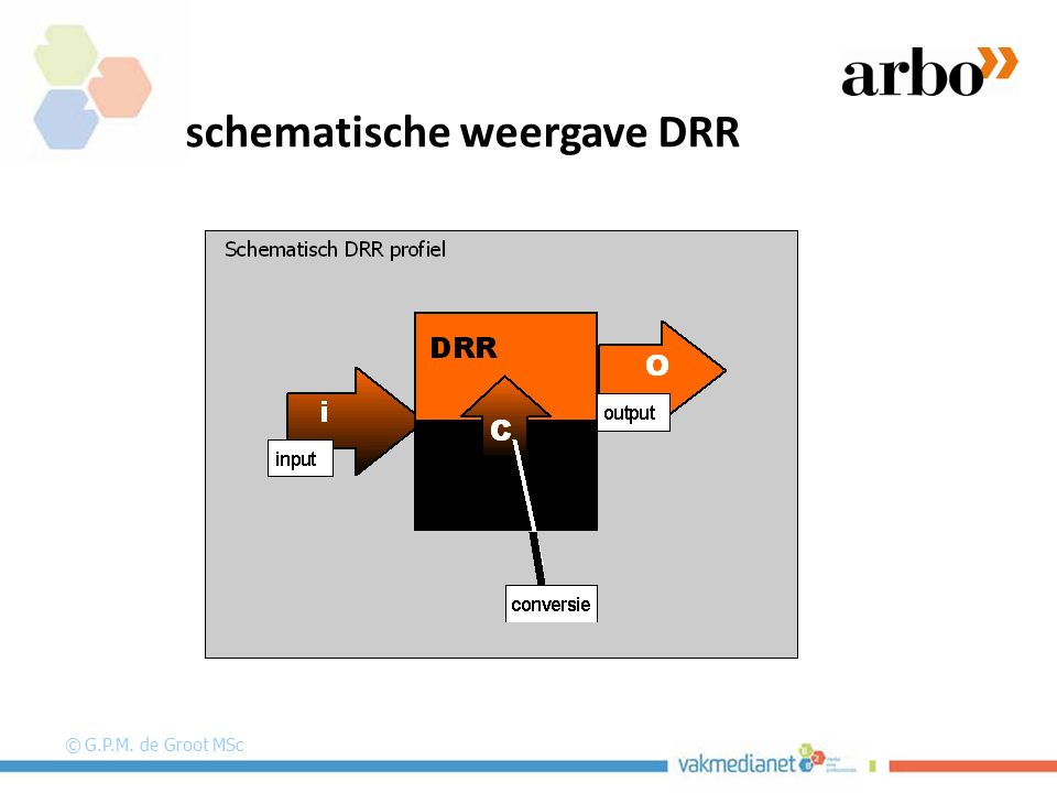 schematische weergave DRR © G.P.M. de Groot MSc