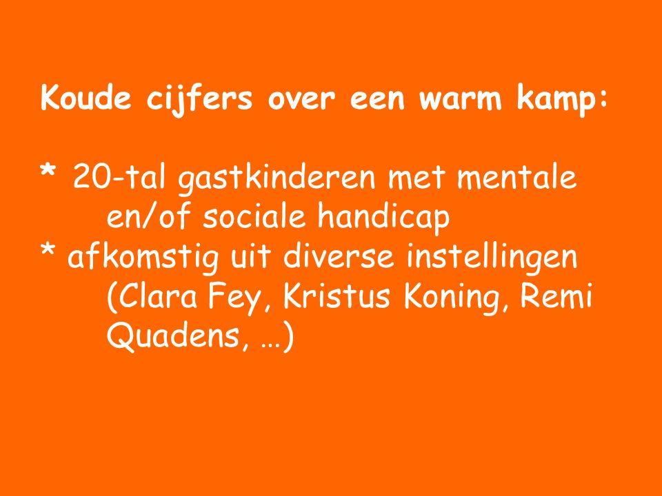 Koude cijfers over een warm kamp: * 20-tal gastkinderen met mentale en/of sociale handicap * afkomstig uit diverse instellingen (Clara Fey, Kristus Koning, Remi Quadens, …)