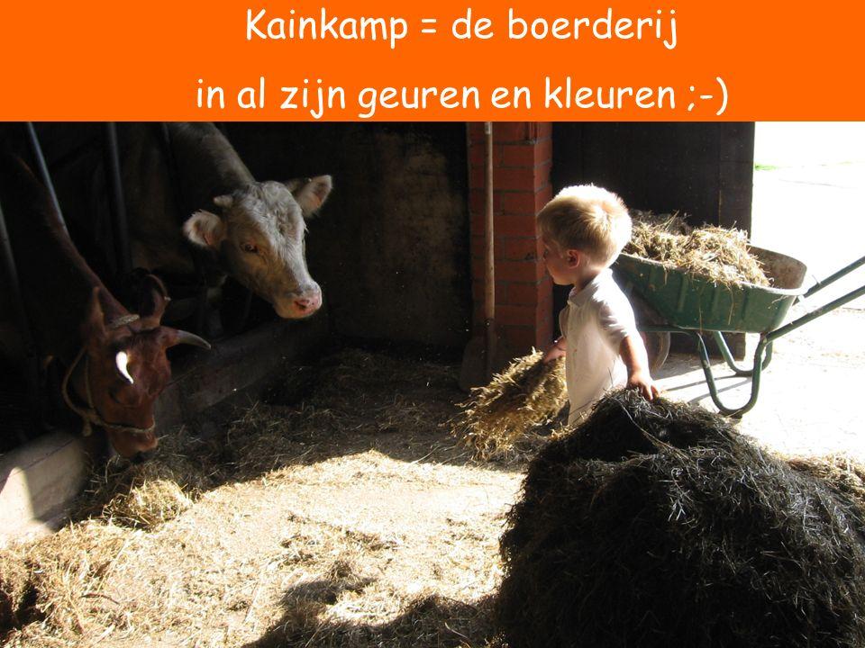 Kainkamp = de boerderij in al zijn geuren en kleuren ;-)