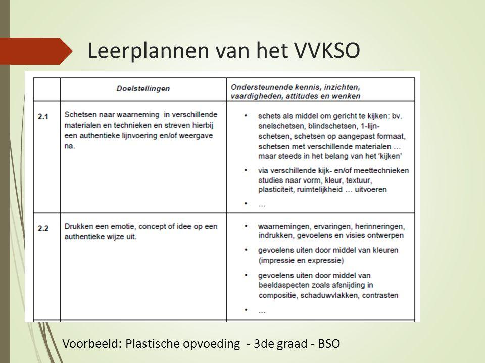 Voorbeeld: Plastische opvoeding - 3de graad - BSO Leerplannen van het VVKSO