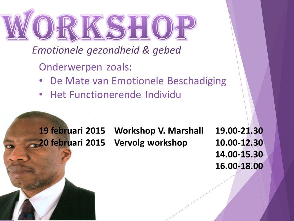 Emotionele gezondheid & gebed Onderwerpen zoals: De Mate van Emotionele Beschadiging Het Functionerende Individu 19 februari 2015 Workshop V.