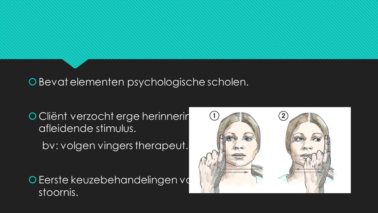  Bevat elementen psychologische scholen.