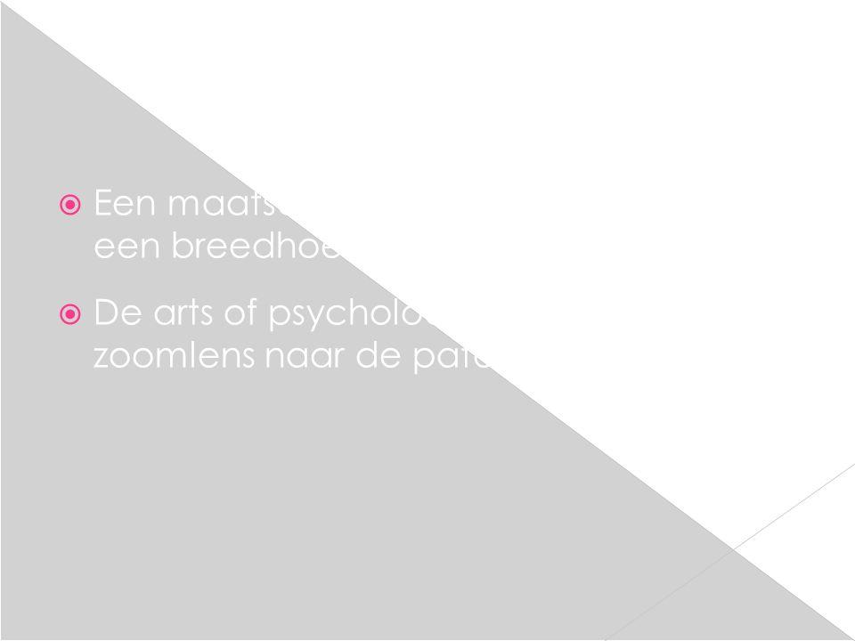 Metafoor van verkeer  Psychiaters en psychologen zijn de garagehouders van de geestelijke gezondheidszorg; Zij stellen een diagnose omtrent een niet goed werkende auto.
