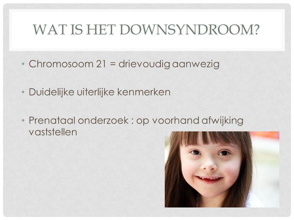 WAT IS HET DOWNSYNDROOM? Chromosoom 21 = drievoudig aanwezig Duidelijke uiterlijke kenmerken Prenataal onderzoek : op voorhand afwijking vaststellen