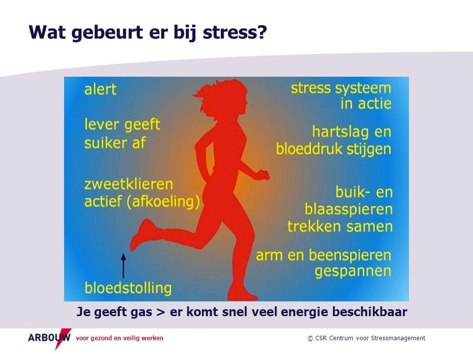 voor gezond en veilig werken Wat gebeurt er bij stress.
