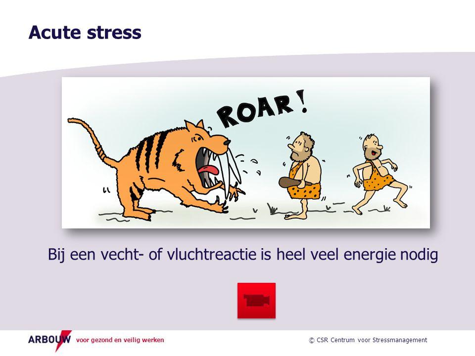 voor gezond en veilig werken Acute stress Bij een vecht- of vluchtreactie is heel veel energie nodig © CSR Centrum voor Stressmanagement