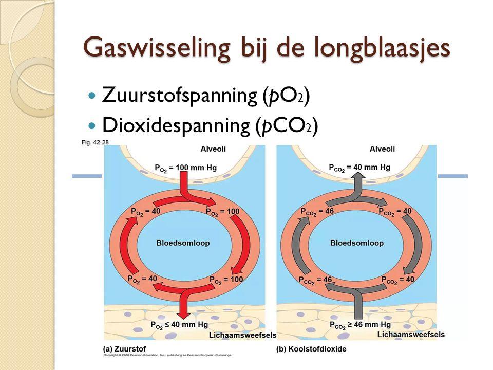 Gaswisseling bij de longblaasjes Zuurstofspanning (pO 2 ) Dioxidespanning (pCO 2 )