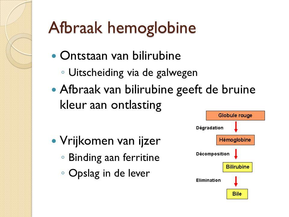 Afbraak hemoglobine Ontstaan van bilirubine ◦ Uitscheiding via de galwegen Afbraak van bilirubine geeft de bruine kleur aan ontlasting Vrijkomen van i
