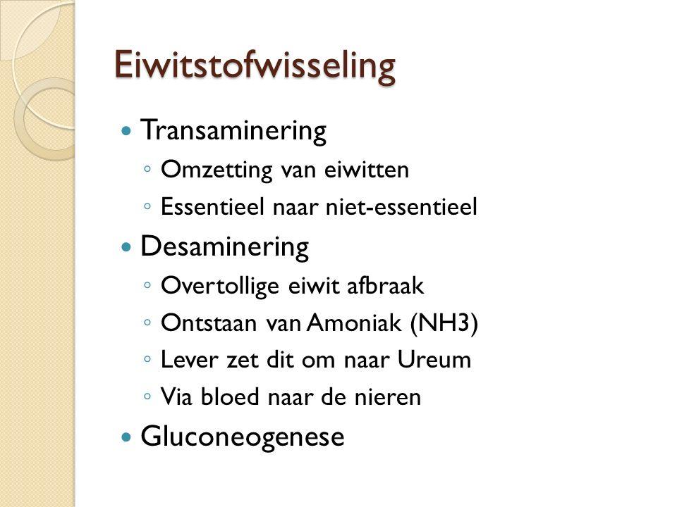 Eiwitstofwisseling Transaminering ◦ Omzetting van eiwitten ◦ Essentieel naar niet-essentieel Desaminering ◦ Overtollige eiwit afbraak ◦ Ontstaan van A
