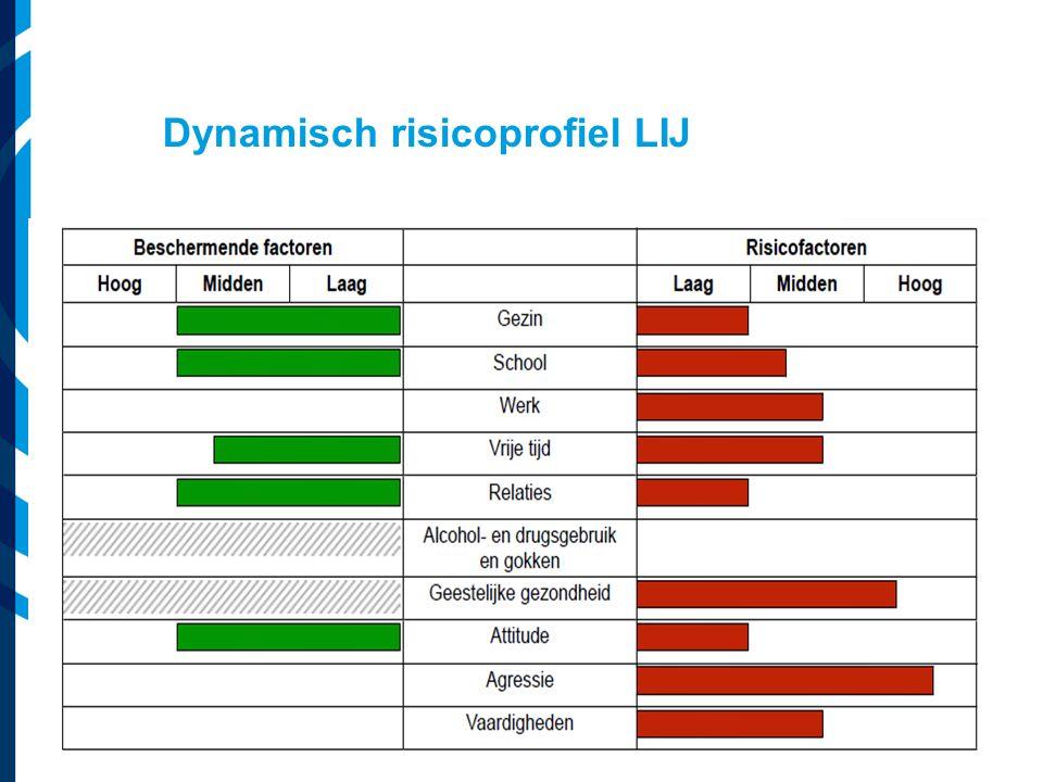 Vereniging van Nederlandse Gemeenten Dynamisch risicoprofiel LIJ