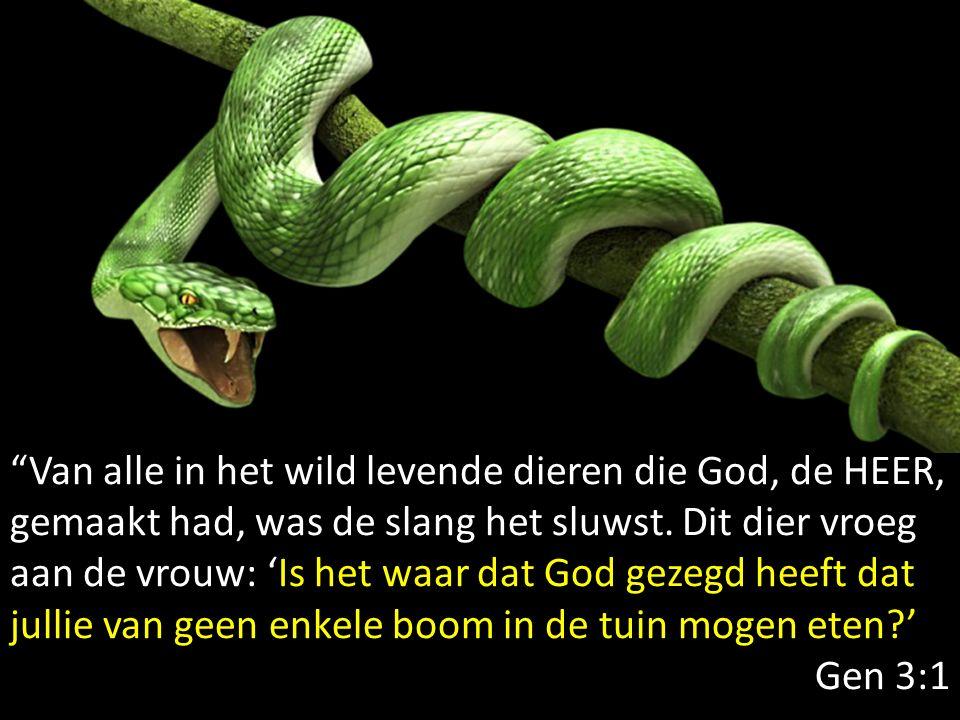 """""""Van alle in het wild levende dieren die God, de HEER, gemaakt had, was de slang het sluwst. Dit dier vroeg aan de vrouw: 'Is het waar dat God gezegd"""