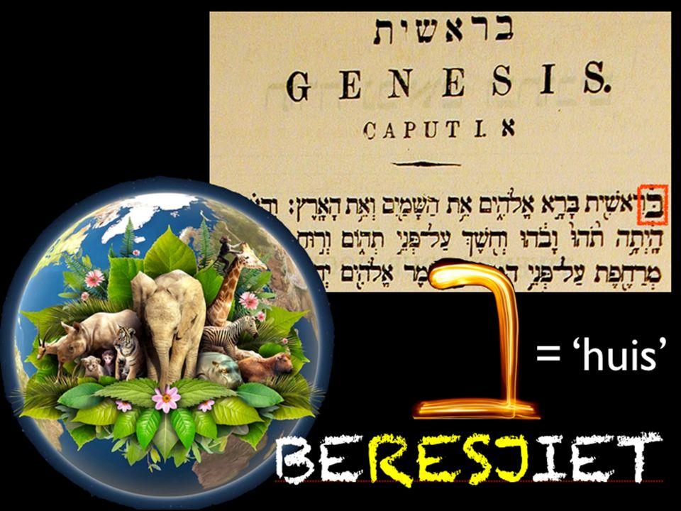 Wat hoop jij te ontdekken bij het lezen van dat bijbelse scheppingsverhaal? Deel dit met elkaar!