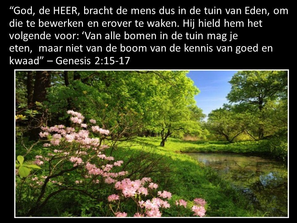 """""""God, de HEER, bracht de mens dus in de tuin van Eden, om die te bewerken en erover te waken. Hij hield hem het volgende voor: 'Van alle bomen in de t"""