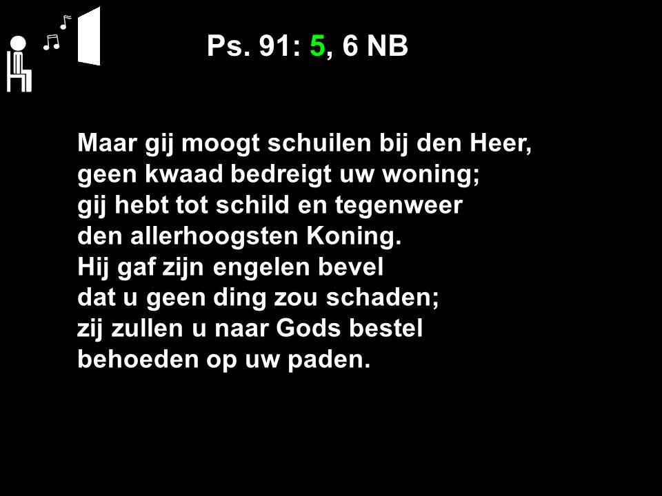Ps. 91: 5, 6 NB Maar gij moogt schuilen bij den Heer, geen kwaad bedreigt uw woning; gij hebt tot schild en tegenweer den allerhoogsten Koning. Hij ga