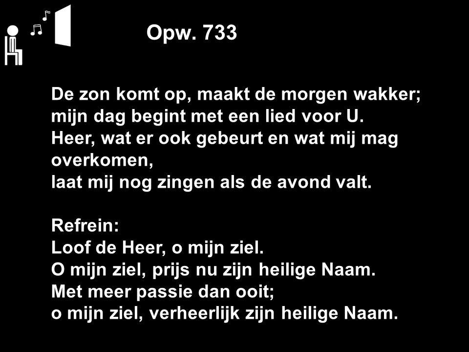 Opw.733 De Heer, vol geduld toont U ons Uw liefde.