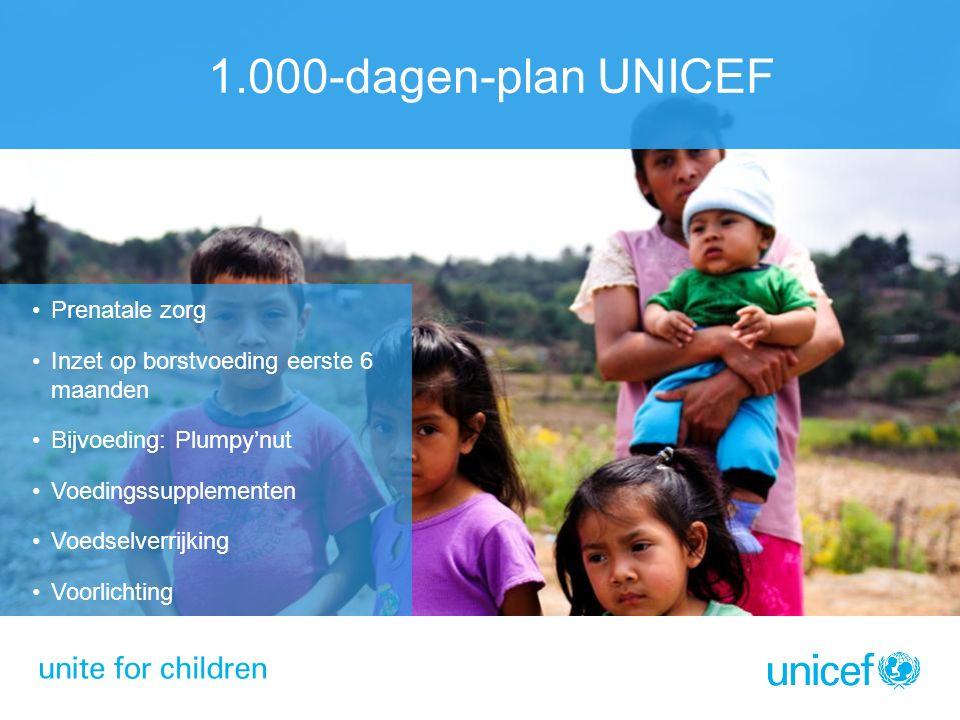 1.000-dagen-plan UNICEF Prenatale zorg Inzet op borstvoeding eerste 6 maanden Bijvoeding: Plumpy'nut Voedingssupplementen Voedselverrijking Voorlichti