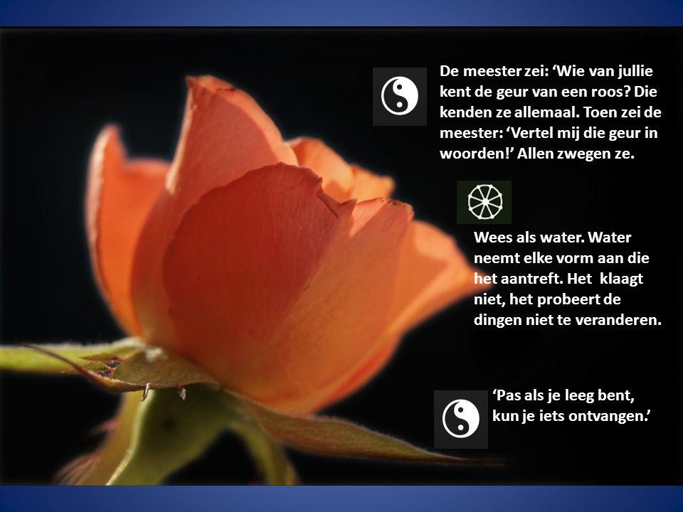 De meester zei: 'Wie van jullie kent de geur van een roos.