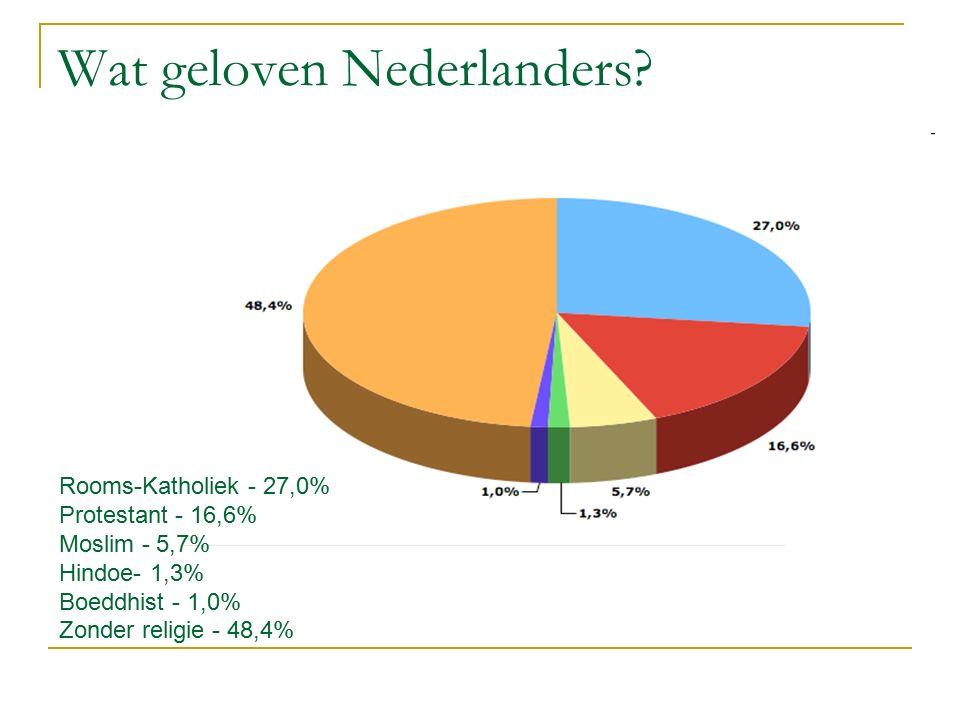 Wat geloven Nederlanders? Rooms-Katholiek - 27,0% Protestant - 16,6% Moslim - 5,7% Hindoe- 1,3% Boeddhist - 1,0% Zonder religie - 48,4%