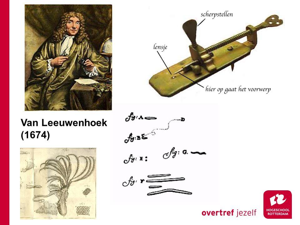 Microscopie Van Leeuwenhoek (1674)
