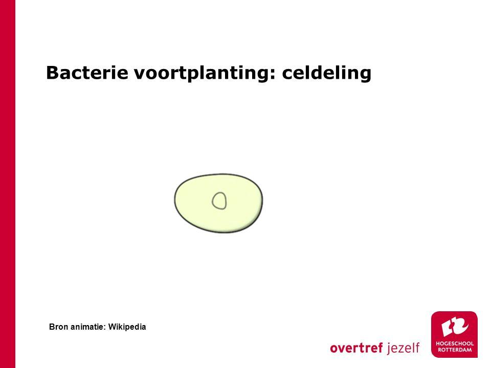 Bacterie voortplanting: celdeling Bron animatie: Wikipedia