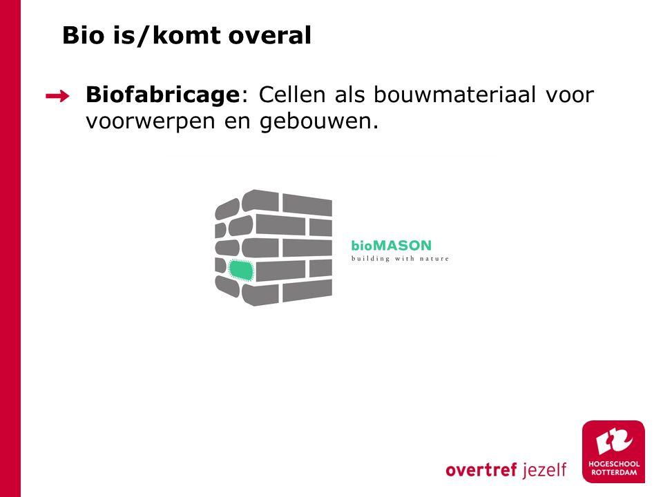 En nu… Bacteriën op je mobiel Let op : Namen Vormen Voedingsbodem Waar komen die bacteriën vandaan?