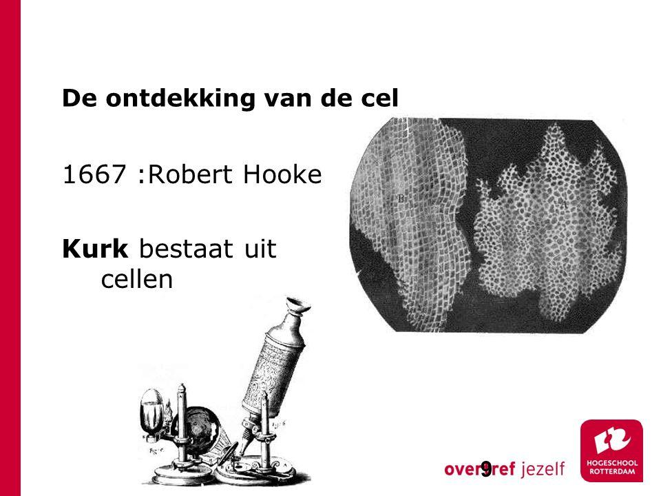 De ontdekking van de cel 1667 :Robert Hooke Kurk bestaat uit cellen 9
