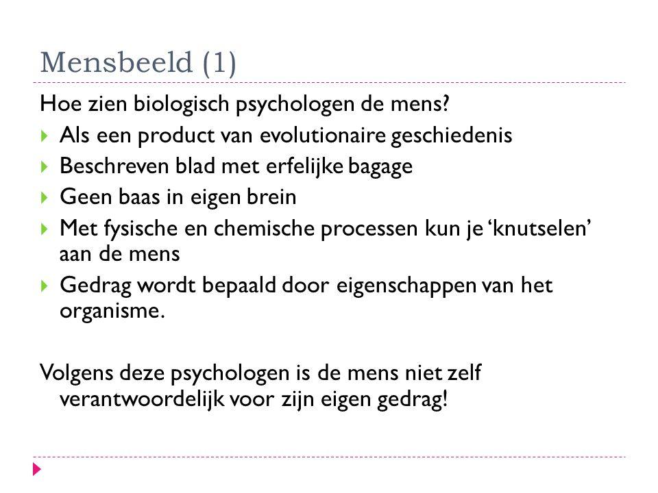 Mensbeeld (1) Hoe zien biologisch psychologen de mens?  Als een product van evolutionaire geschiedenis  Beschreven blad met erfelijke bagage  Geen