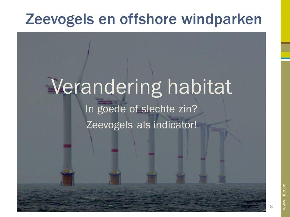 Zeevogels en offshore windparken 3 Verandering habitat In goede of slechte zin? Zeevogels als indicator!