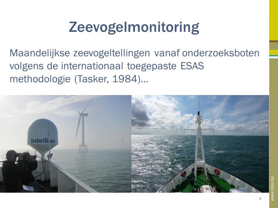 Zeevogelmonitoring 4 Maandelijkse zeevogeltellingen vanaf onderzoeksboten volgens de internationaal toegepaste ESAS methodologie (Tasker, 1984)…