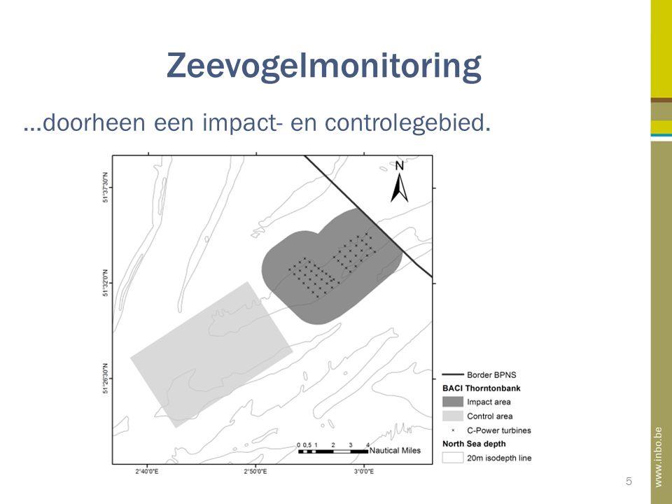 Zeevogelmonitoring 5 …doorheen een impact- en controlegebied.
