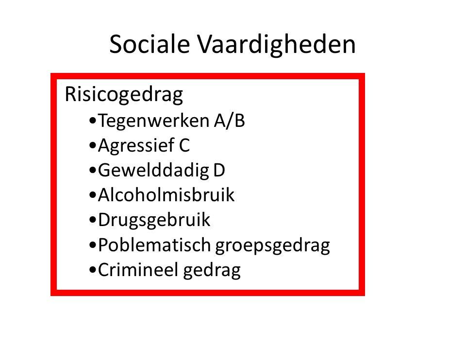 Sociale Vaardigheden Risicogedrag Tegenwerken A/B Agressief C Gewelddadig D Alcoholmisbruik Drugsgebruik Poblematisch groepsgedrag Crimineel gedrag