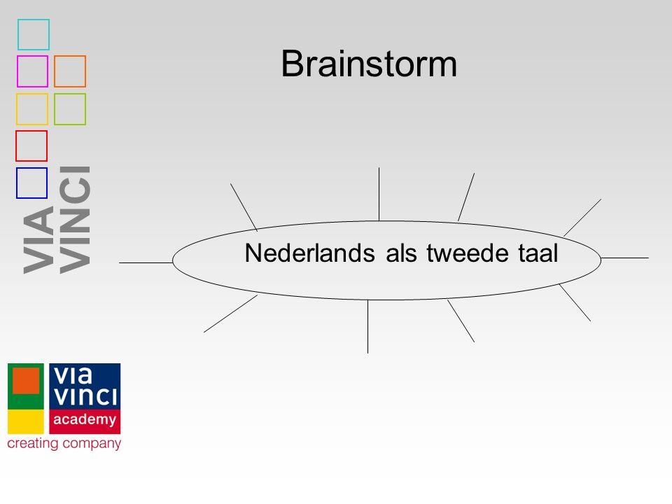 VIAVINCI Brainstorm Nederlands als tweede taal