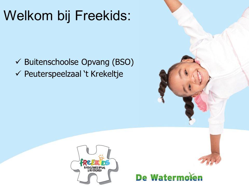 Welkom bij Freekids: Buitenschoolse Opvang (BSO) Peuterspeelzaal 't Krekeltje