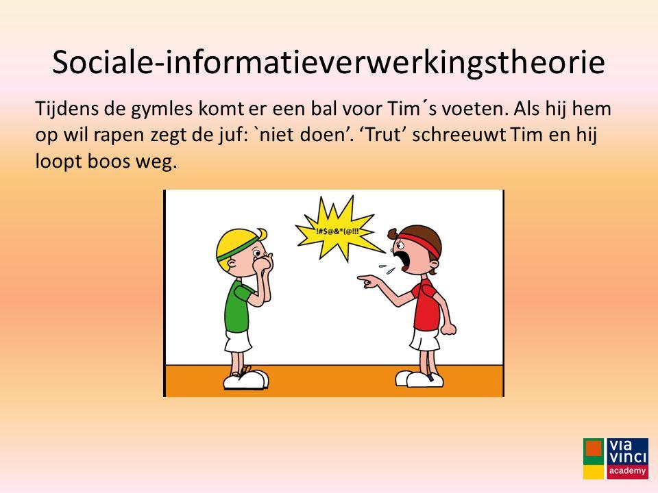 Sociale-informatieverwerkingstheorie Tijdens de gymles komt er een bal voor Tim´s voeten. Als hij hem op wil rapen zegt de juf: `niet doen'. 'Trut' sc
