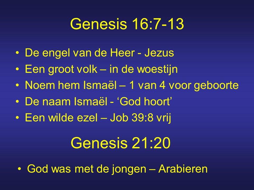 Genesis 16:7-13 De engel van de Heer - Jezus Een groot volk – in de woestijn Noem hem Ismaël – 1 van 4 voor geboorte De naam Ismaël - 'God hoort' Een