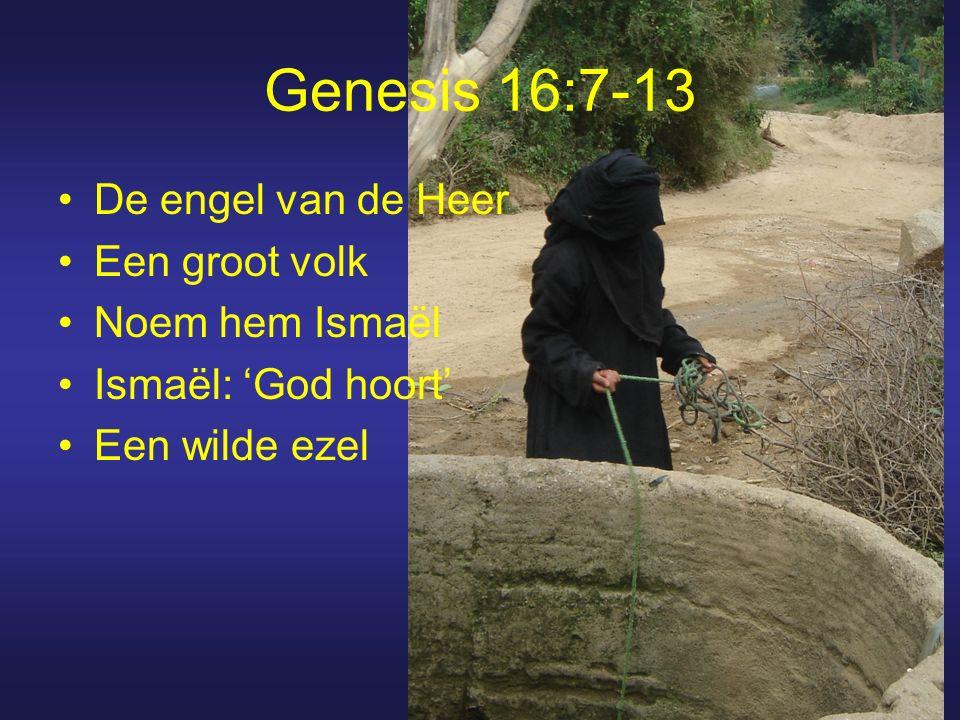 Genesis 16:7-13 De engel van de Heer Een groot volk Noem hem Ismaël Ismaël: 'God hoort' Een wilde ezel