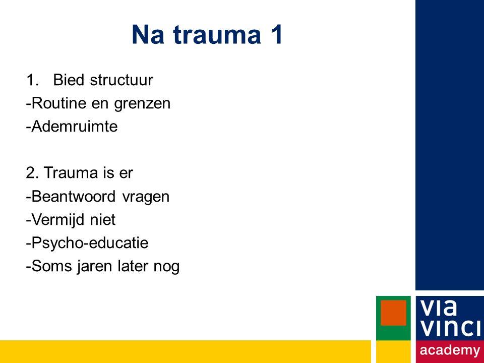 Na trauma 1 1.Bied structuur -Routine en grenzen -Ademruimte 2.