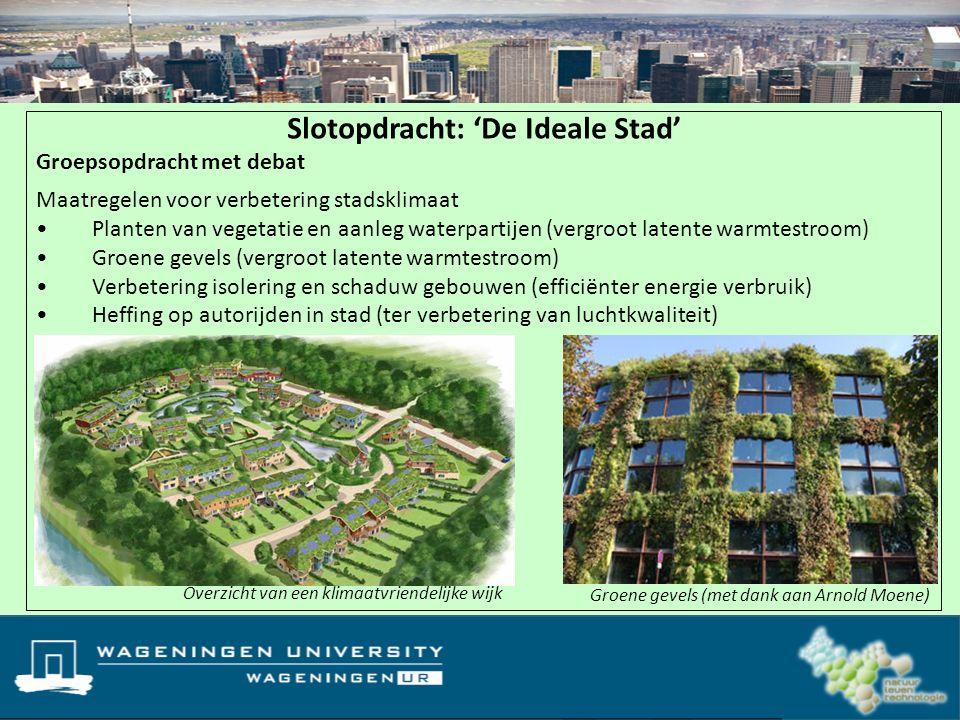 Overzicht van een klimaatvriendelijke wijk Slotopdracht: 'De Ideale Stad' Groepsopdracht met debat Maatregelen voor verbetering stadsklimaat Planten v