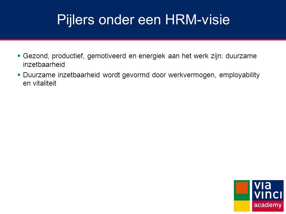 Pijlers onder een HRM-visie  Gezond, productief, gemotiveerd en energiek aan het werk zijn: duurzame inzetbaarheid  Duurzame inzetbaarheid wordt gev